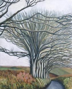 Cornwall Lane's Journey, Clare Burgess