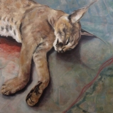 Caracal mortuary 17, Gabriella Leighton