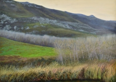 Early winter in the Hemel en Aarde valley, Mel Williamson