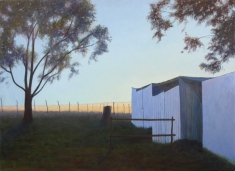 Sunset in the Hemel en Aarde valley, Mel Williamson