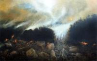 Black fire, Vernon Williams